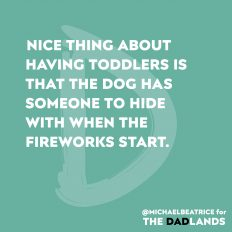 Fireworks, dogs, and toddlers